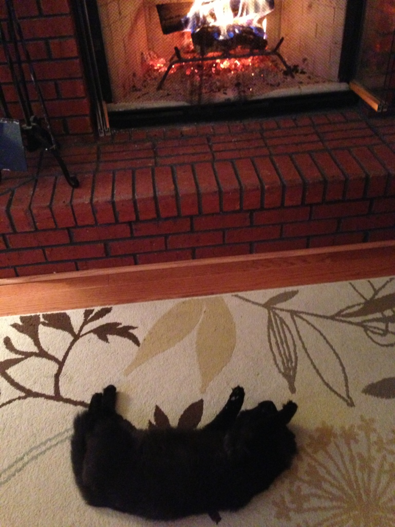 Fire Place is the Best Place