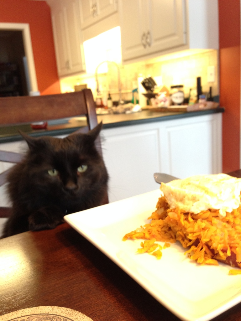 Sneak was disappointed to learn this was not his breakfast.